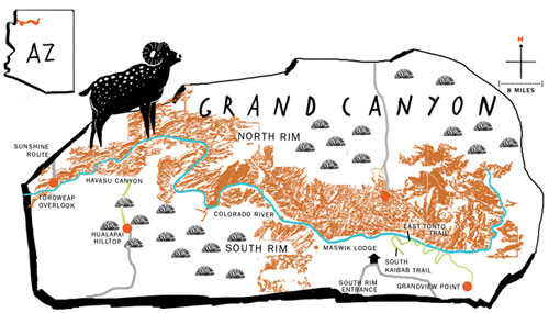Grand-canyon-500