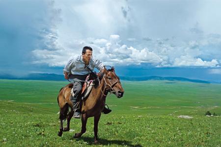 Lin-horse-450