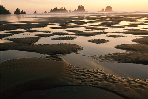 Pacific-trail