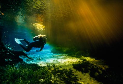 Dive-caves