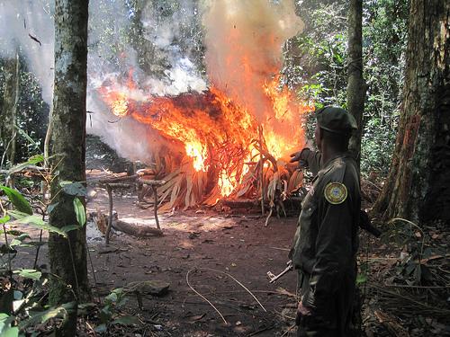Burningpoachingcamp
