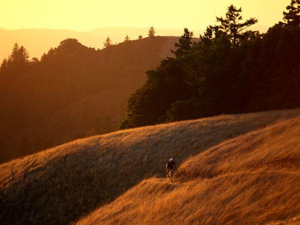 Bolinas-ridge-mount-tamalpais-state-park_37649_600x450