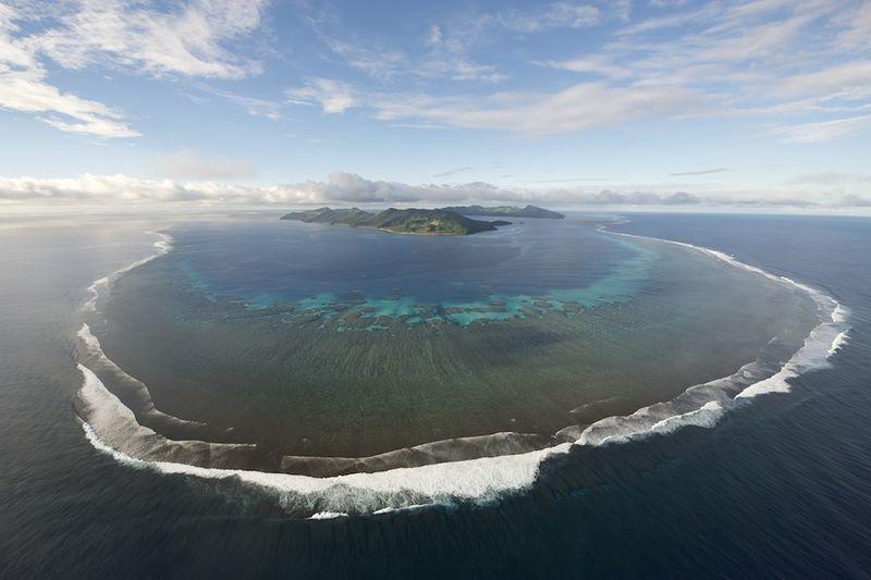 Totoya reef